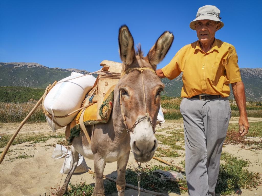 Nad jeziorem Prespa w Albanii, pan z osiołkiem,  A man with a donkey, Albania