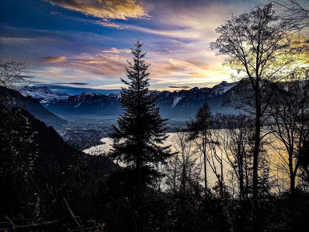 spanie na dziko, Szwajcaria za friko
